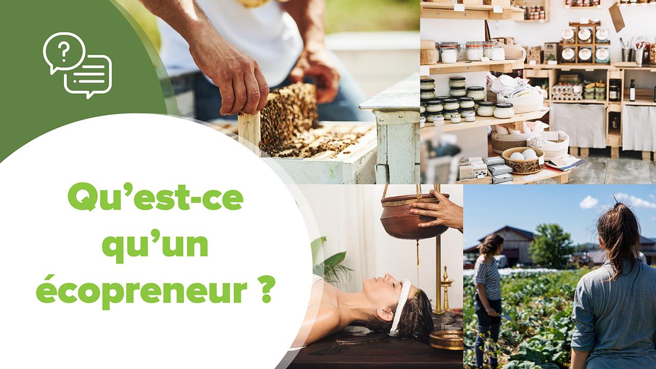 Qu'est ce qu'un Ecopreneur, Qu'est ce qu'un Ecopreneur ?
