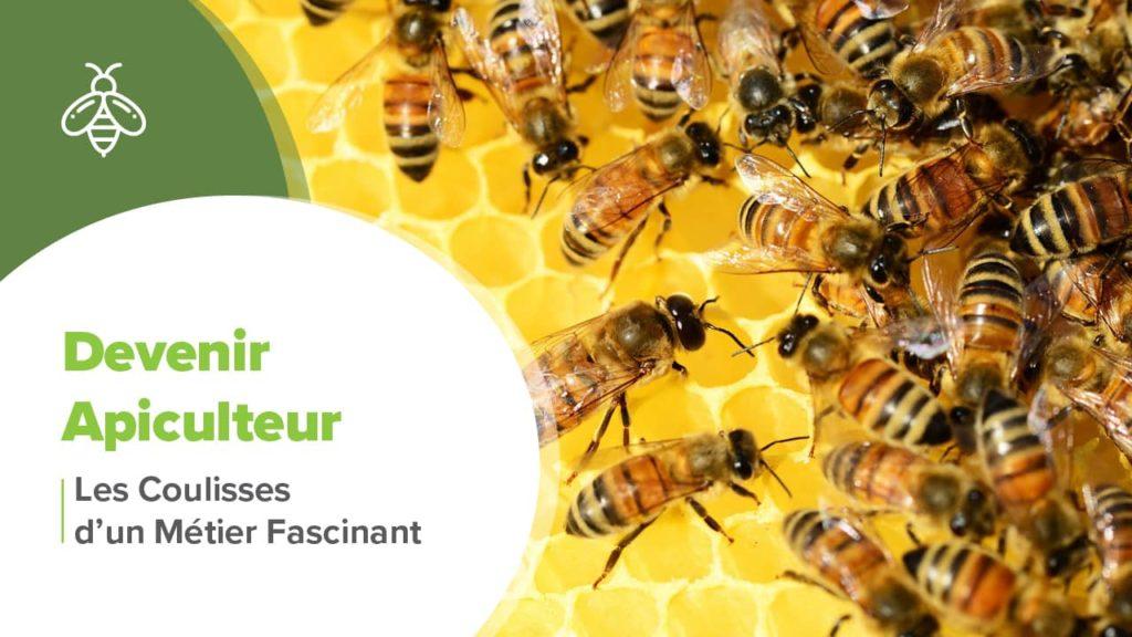 Comment devenir apiculteur écologique, éthique et durable